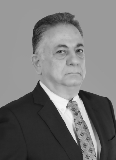 Mahmoud Al Manini-image